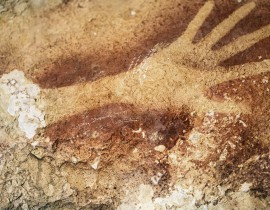 Prof. Eric Delson Weighs In On Recent Discovery of Cave Paintings in Indonesia