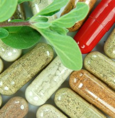 "Lehman Professor Says Botanical Supplements Industry Must ""Clean Up Its Act"""