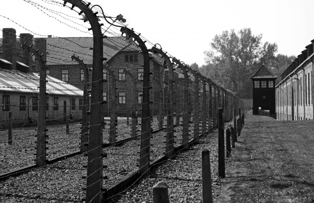 the history of auschwitz a nazi concentration camp