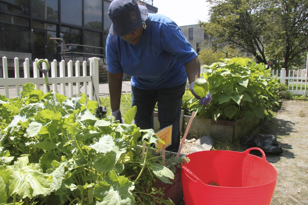Lisa Hiers, a student in the Adult Learning Center, performing maintenance work in the garden.