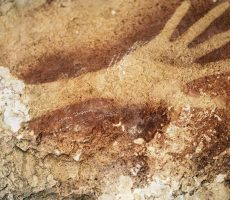 Paleoanthropologist Eric Delson of Lehman's Anthropology Department was quoted in an article in the New York Times about the recent discovery of cave paintings found on the island of Sulawesi in Indonesia.
