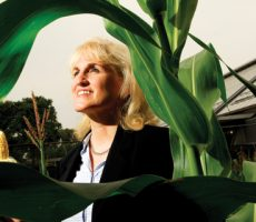 Dr. Eleanore T. Wurtzel of Lehman College's Biological Sciences Department and the Graduate Center, CUNY is on a mission to develop plants that are rich in provitamin A carotenoids, an ingredient critical to the elimination of Vitamin A deficiency around the world.