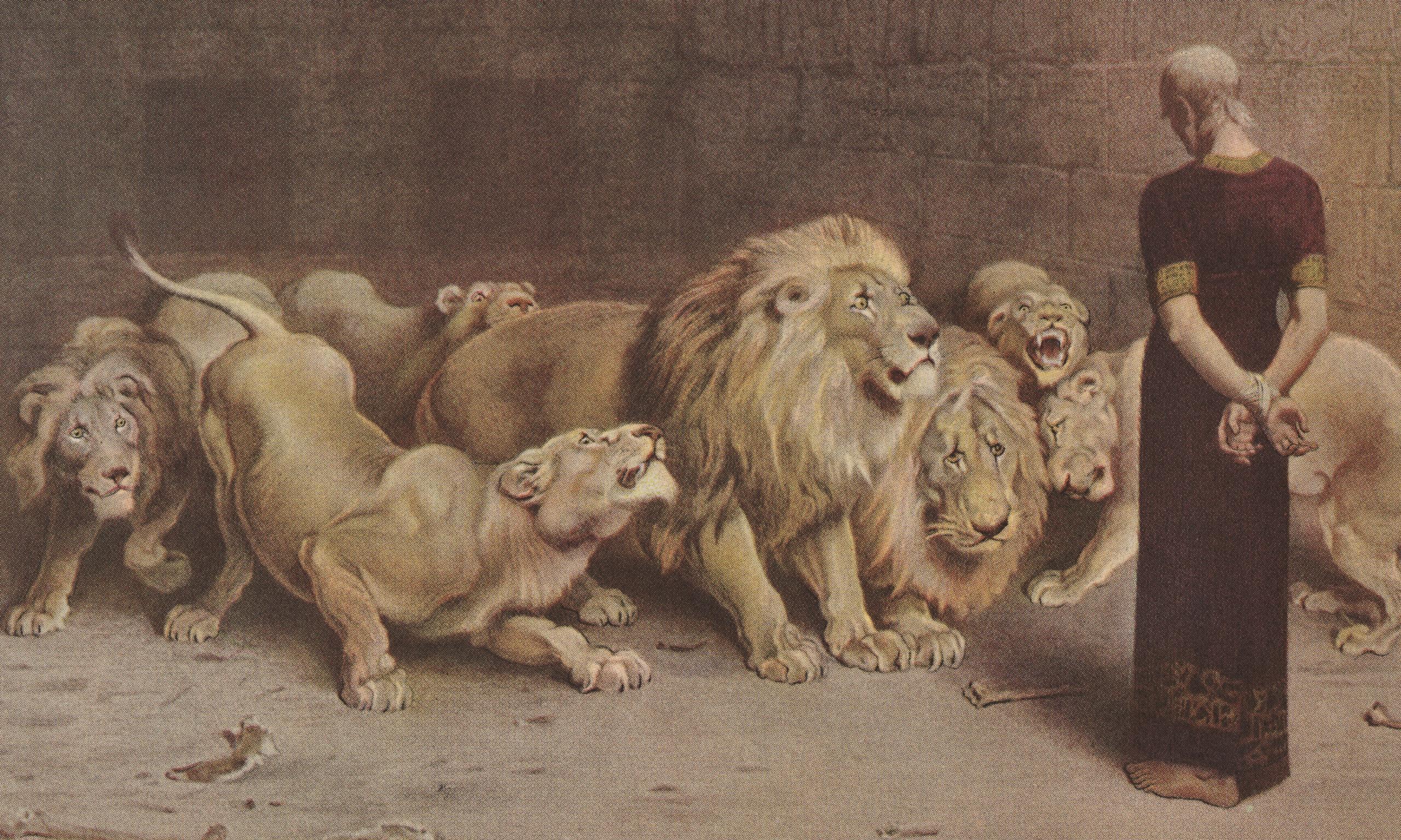 new musical u0027daniel in the lions u0027 den u0027 opens at lehman college may 12